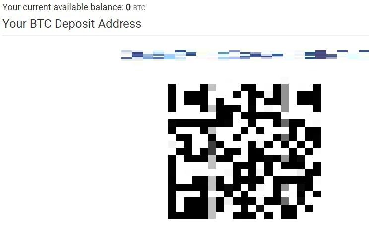 表示された Deposit Address へコインチェックや bitFlyer 等の取引所から送金を行う