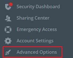 左のメニューから [Advanced Option] を選択